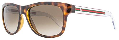 Gucci sunglasses GG 3709/S 2W0HA Acetate Havana - Crystal Brown Gradient (Gucci Crystal Sunglasses)