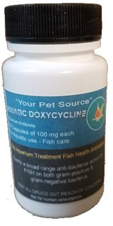 50-capsules-fish-aquarium-treatment-fish-health-antibiotics