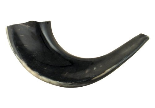 ajudaica 27, 9cm–12koscher schwarz Rams Horn poliert Schofar Made in Israel