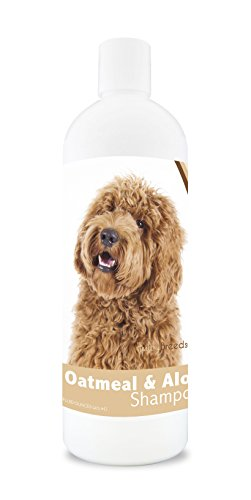 Healthy Breeds Dog Oatmeal Shampoo With Aloe For Labradoodle - Over 75 Breeds - 16 Oz - Mild And Gentle For Itchy, Scaling, Sensitive Skin - Hypoallergenic Formula And Ph Balanced