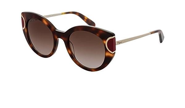 f7b75570864 Amazon.com  Salvatore Ferragamo Sunglasses SF829S 207 Tortoise Red  Clothing