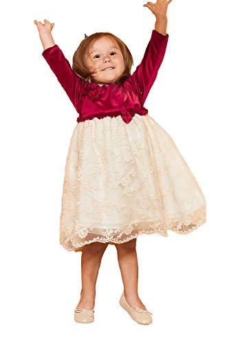 (Toddler Kids Baby Girls Long Sleeve Princess Flower Applique Dress Velvet & Lace Dress 12-24 Months)