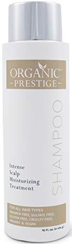 Luxury Shampoo With Aloe Vera - Sulfate Free Shampoo for Color Treated Hair - Organic Volumizing Shampoo & Hair Repair Treatment for Hair Loss - Moisturizing Shampoo for Dry & Itchy Scalp (16 oz)