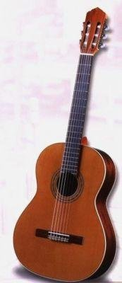 Antonio Sanchez 1008 Spanish Classical Guitar