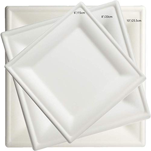 Brheez 8 Inch Heavy Duty Square Plates 100% Natural Sugarcane Biodegradable Compostable Bagasse, Eco-friendly paper alternative - Pack of 60 -