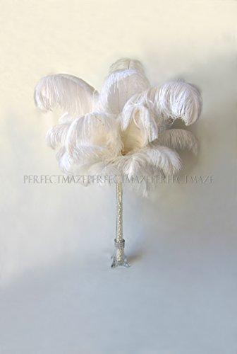Perfectmaze 50 Piece 16''-18'' Ostrich Feather Premium Quality for Wedding Party Centerpiece Vase Decoration by Perfect Maze