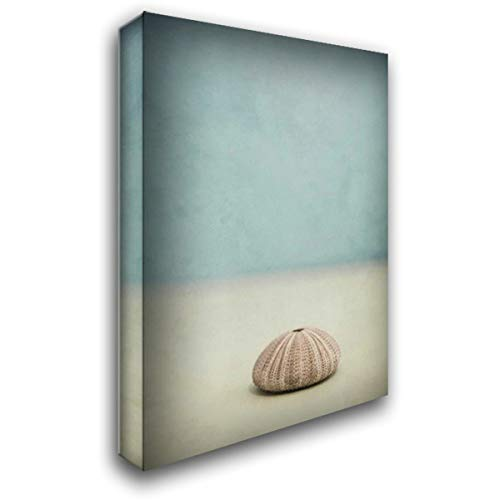 She Sells Seashells I 28x40 Gallery Wrapped Stretched Canvas Art by Murray, Roberta