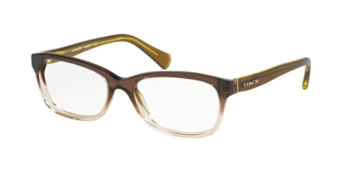 Coach Women's HC6089 Eyeglasses Olive Brown Gradient/Olive 51mm