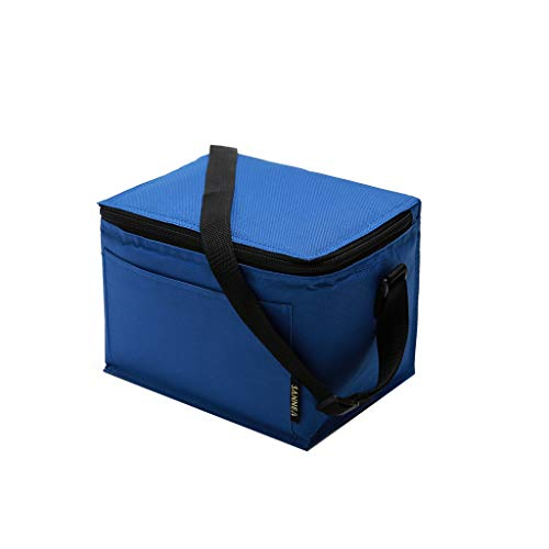 Ktyssp Insulated Lunch Bag for Women Men Kids Cooler Adults Tote Food Lunch Box - Chest 5 Spring Drawer Garden
