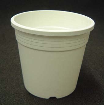 プラ鉢 A-50 白 30個セット