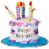 Phenomenal Adult Happy Birthday Cake Hat With Candles Fancy Dress Party Funny Birthday Cards Online Elaedamsfinfo