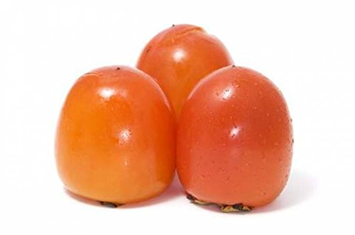 (Eureka Japanese Persimmon Tree GRAFTED Cannot Ship to CA, AZ, AK, HI, OR or WA PER Your State Laws)