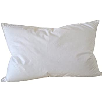 Amazon Com Natural Comfort King Classic White Goose Down