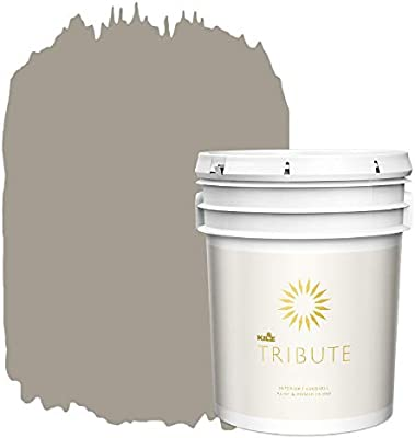 Amazon Com Kilz Tribute Interior Eggshell Paint And Primer In One 5 Gallon Greyswood Tb 16 Home Improvement