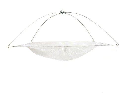 Ranger Umbrella Minnow Net with Nylon Netting (36-Inch x 26-Inch)