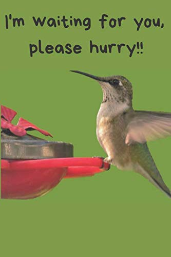 Hummingbird Blank Lined Journal: A notebook, daily dairy, gift idea for Hummingbird lovers!!  Keep track of your sightings!