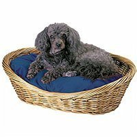 Snoozer Wicker Dog Basket and Bed, Small, Navy, My Pet Supplies