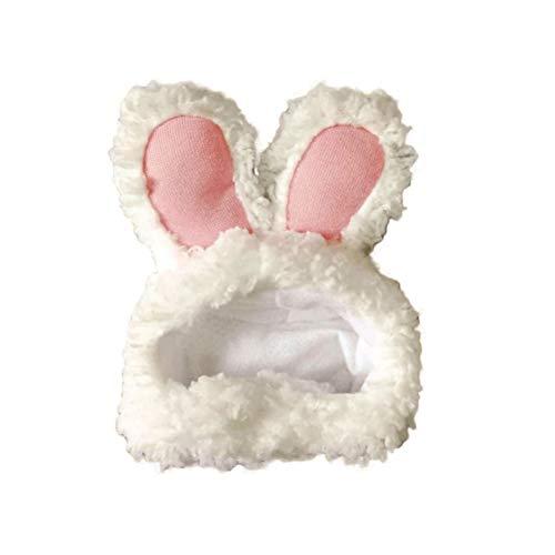 BETTLI 토끼 토끼 모자 귀여운 귀 의상 고양이 강아지 작은 애완 동물 FA(오프 화이트)