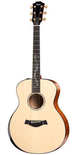 Taylor Guitars 2010 Fall Limited GS-FLTD Grand Symphony Acoustic Electric Guitar