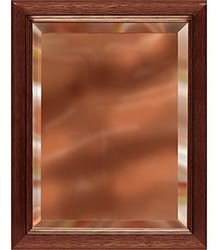 9 x 12 Gold Mirror Plaque Engraved in Brown Wood frame by Gino's Awards Inc