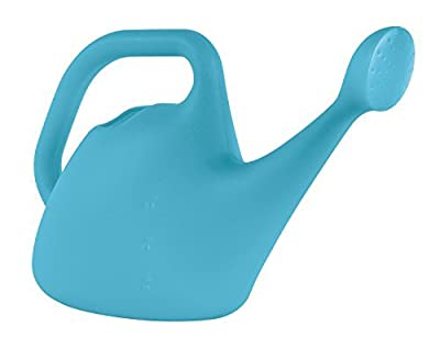 Watering Can 1 Gal Blue