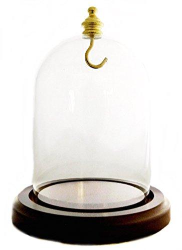 Pocket Watch 5 Glass Dome Walnut Base, Brass top, Brass Hook