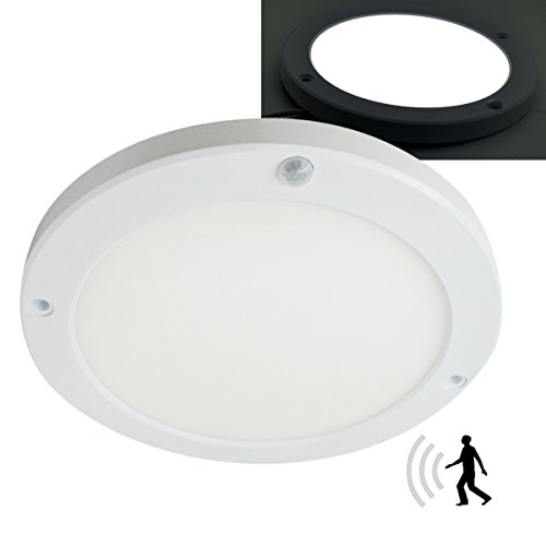 Light Round Back Ceiling Mount - 9