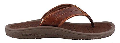 Sebago Men's Drift and Dune Thong Flip Flop, Brown Oiled Waxy Leather, 9 M US (Sebago Mens Slip)