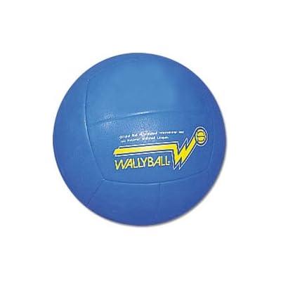 BSN Official Wallyball Ball : Walleyball Balls : Sports & Outdoors