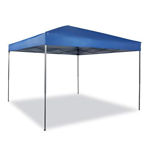 10x10 portable canopy - 3