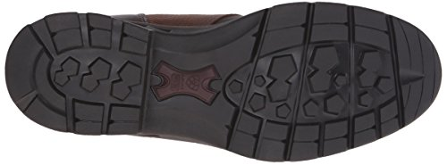 Fashion Boot Women's GTX Ebony Outdoor Ariat Berwick Insulated fXFgnYOq