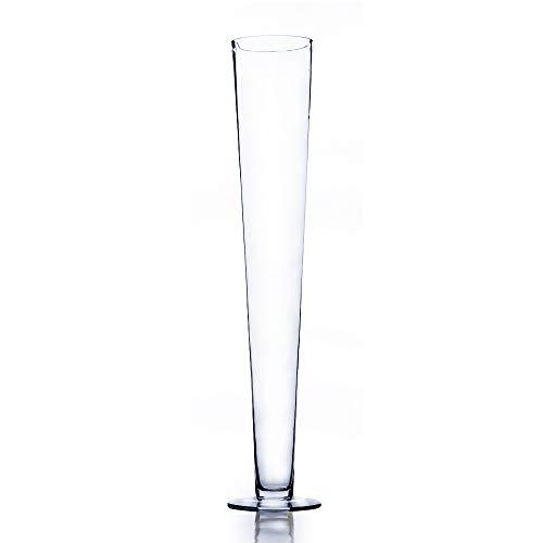 WGV International VTV0424_6 Trumpet Pilsner Vase, 24, Clear ()