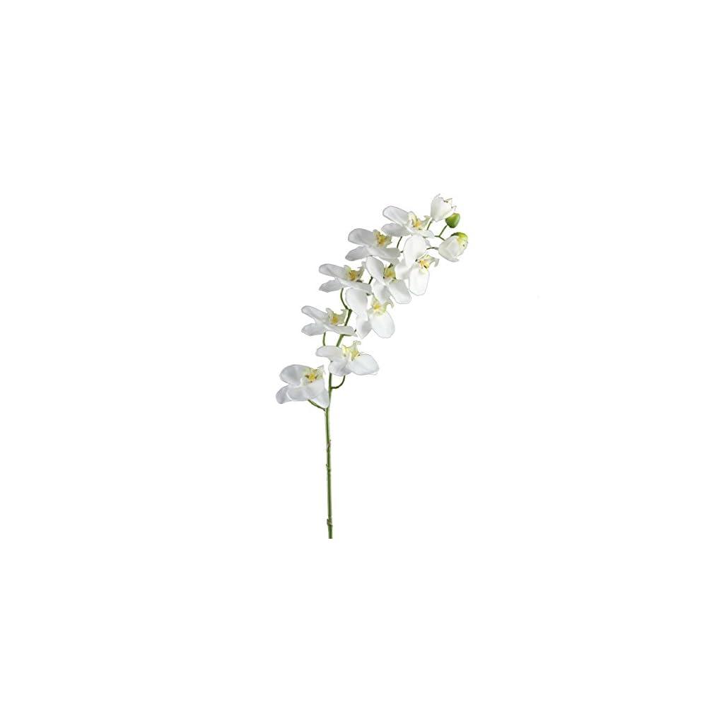Shinoda Design Center 32.5″ White w/Green Edge Faux Phalaenopsis Orchid Spray w/9 Flowers