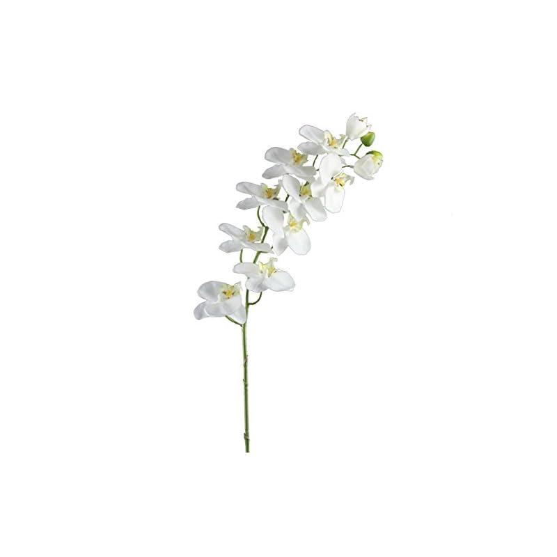"silk flower arrangements shinoda design center 32.5"" white w/green edge faux phalaenopsis orchid spray w/9 flowers"