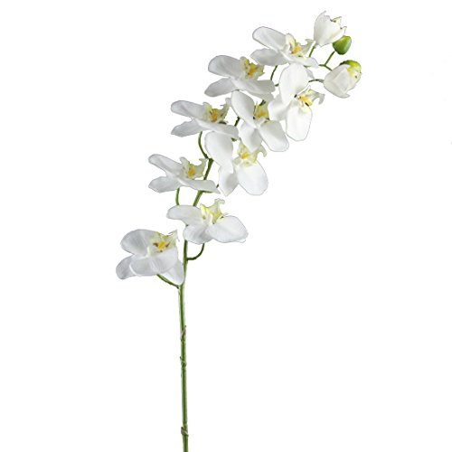 Shinoda Design Center 0031300799 White with Green Edge Faux Phalaenopsis Orchid Spray with 9 Flowers, 32.5