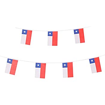 amazon com chile stick flag chilean hand held mini small flags on