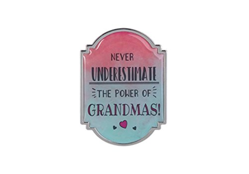 Ganz Home Decor Love & Blessings 2.75 inch Mini Motivational Message Magnet/Plaque ~ Lovely Mom Parent Series (Never Underestimate the Power of Grandmas!)