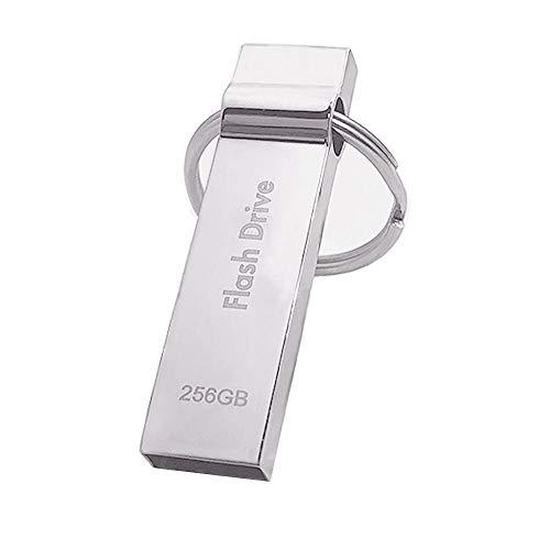 256GB USB Drive, Sotani USB 2.0 Memory Stick Waterproof Storage Thumb Drive with Keychain (Silver) (Keychain Memory Stick)