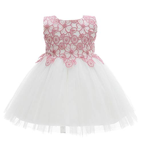 Moon Kitty Baby Girls Pink Embroidery Flower Dresses Christening Baptism Gown for Baby ()