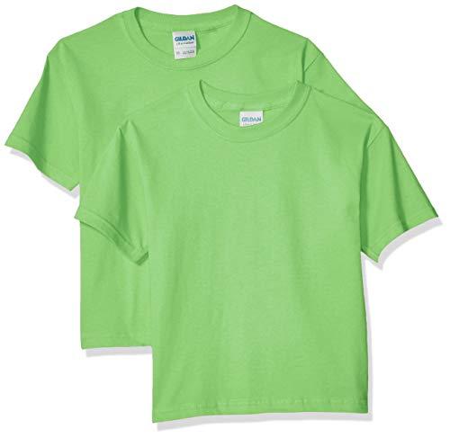 Boys Lime Green - Gildan Kids' Big Ultra Cotton Youth T-Shirt, 2-Pack, Lime, Small