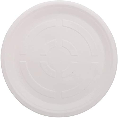 ECOWARE: 100% Biodegradable, Compostable, Ecofriendly, Disposable Round Plate 12 inch (Pack of 50 Plates)