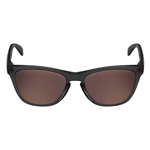 c45ce7c6c3 Jual Mryok Replacement Lenses for Oakley Frogskins - Options ...