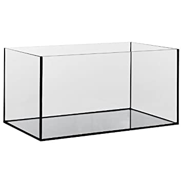 Diversa Acuario de cristal, rectangular 30 x 20 x 20 cm, capacidad 12 l: Amazon.es: Productos para mascotas