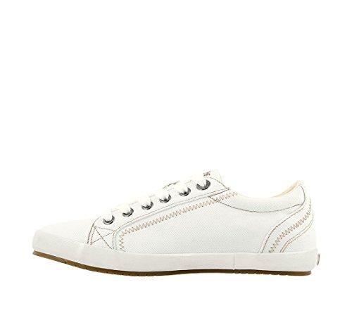 Sneaker Fashion Taos Footwear White Star Women's nfwTgYq