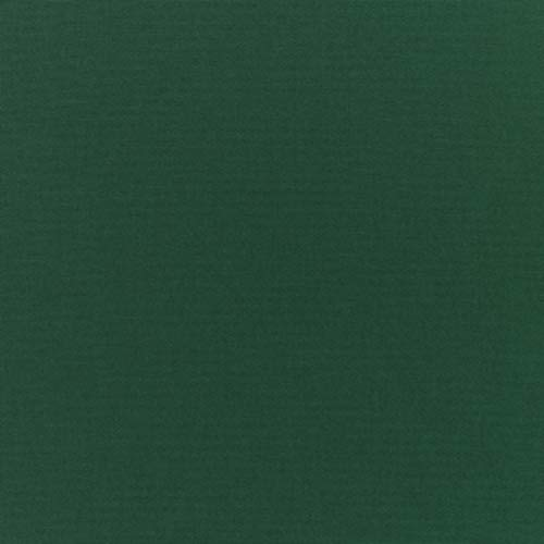 Genuine Sunbrella Canvas Forest Green #5446 Indoor/Outdoor Upholstery Fabric by The Yard (First Quality) ()