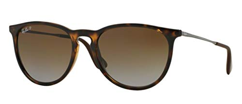 Ray-Ban RB4171 (710/T5) Havana/Polarized Brown Gradient 54 mm Sunglasses Bundle with original case, cloth, booklet and accessories (6 ()