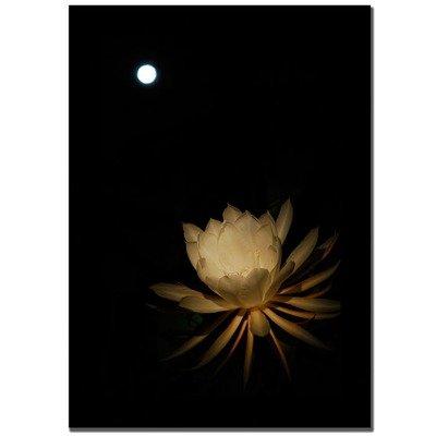Full Moon Bloom by Kurt Shaffer, 16x24-Inch Canvas Wall Art Full Moon Futon