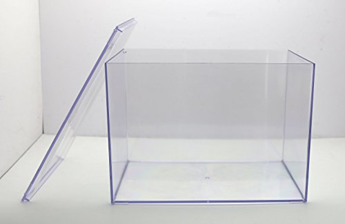 "Clear Plastic Display Box - 12 1/2""L X 8 1/2""W X 8 1/2""H - 1 Box"