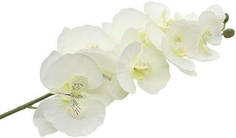 GIRLS 60s CREAMY WHITE CHIFFON FLOWER BUTTERFLY PRINT NECKLACE TRIM PARTY DRESSS