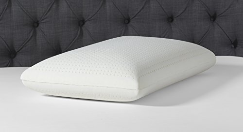 Simmons Beautyrest Authentic Talalay Latex Foam Pillow